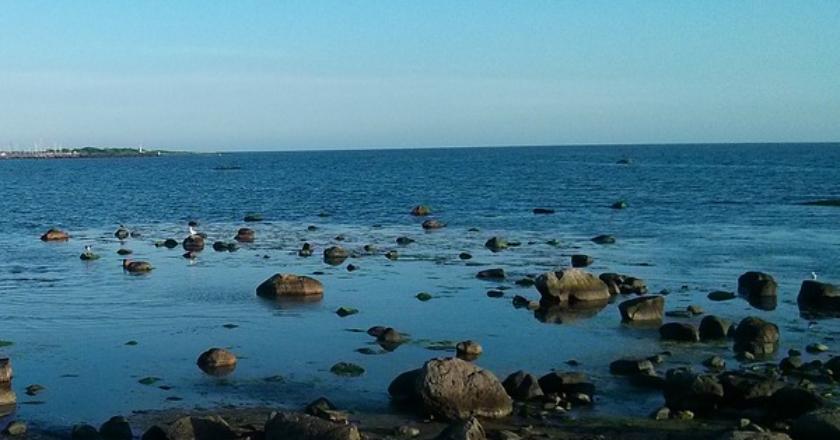 Θάλασσα,πετραδάκια,Σκανδιναβία-Ατλαντικός-Καλαμίδας-Άρθρο