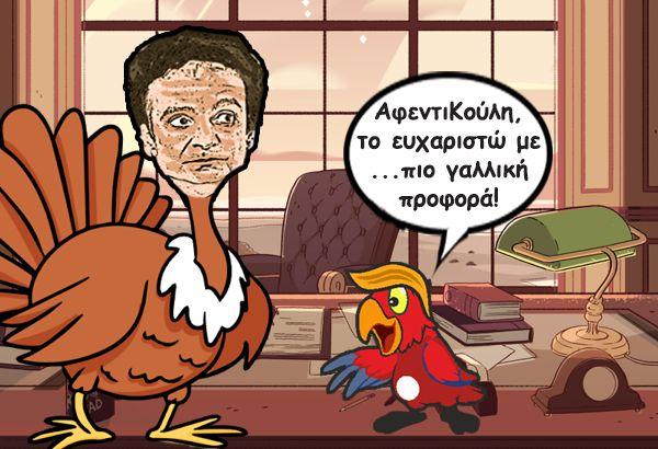 koulis-galopoulakis-humor-galiki-profora