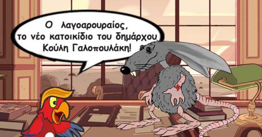 galopoulakis-humor-xrysi-avgi-koylis-kalamidas